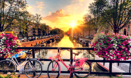Amsterdam top